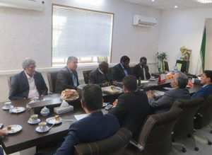 Senegal envoy calls for expansion of ties with Iran
