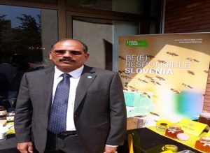 FAO representative: Iran amazing in beekeeping