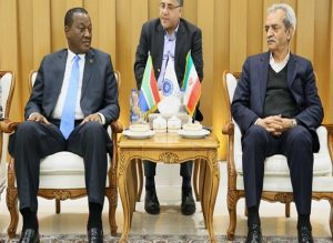 Iran able to help South Africa tackle energy challenges