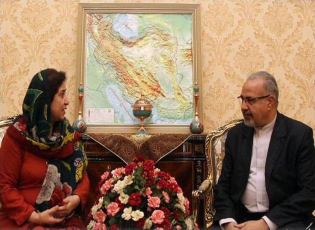 Islamabad calls for expansion of ties with Tehran