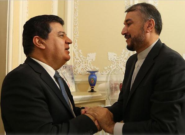 دیدار و تبادل نظر سفیر سوریه با دستیار رئیس مجلس شورای اسلامی