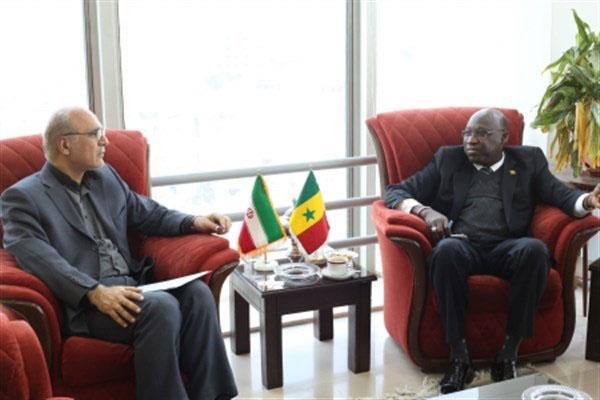 سفیر سنگال در دیدار با  قائم مقام وزیرعلوم خواستار همکاری علمی بین دو کشور شد