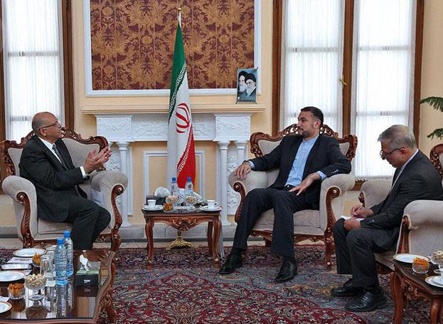 دیدار و تبادل نظر امیرعبداللهیان با رئیس دفتر حافظ منافع مصر در ایران