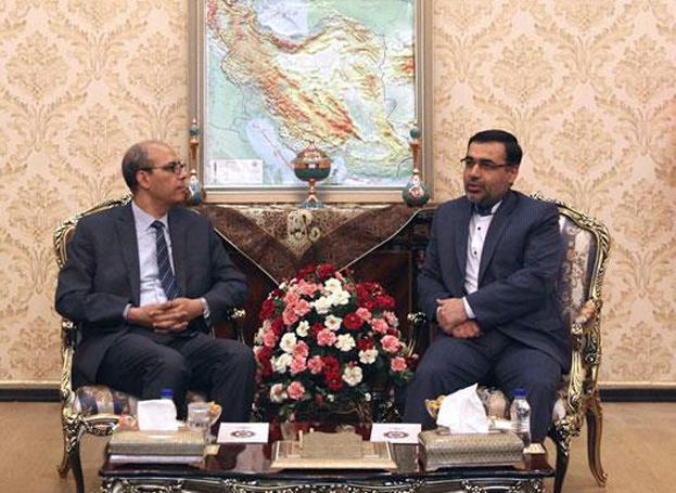 دیدار مسعود گودرزی با سفیر مغرب در تهران