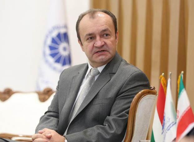 سفیر مجارستان: ثبت جهانی یزد عاملی برای معرفی هویت غنی مردم یزد است