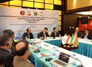 فائو خواستار همکاری گسترده افغانستان، ایران، پاکستان و تاجیکستان در مبارزه با بیماریهای دامی فرامرزی شد