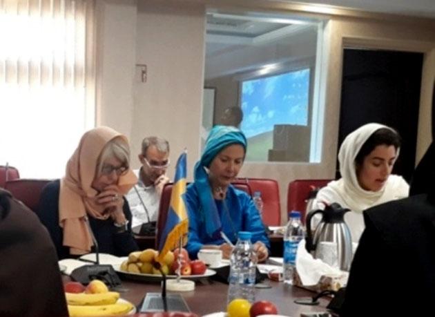 سفیر سوئد در ایران: خدمات ایران در زمینه حمایت از زنان قابل ستایش است
