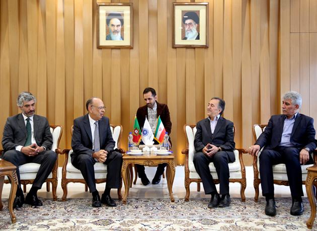 ایران و پرتغال به دنبال همکاری در صنایع مکمل هستند