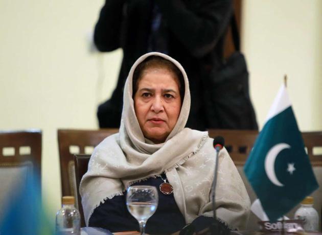 سفیر پاکستان:برای آزادی مرزبانان از تمام امکانات استفاده می کنیم