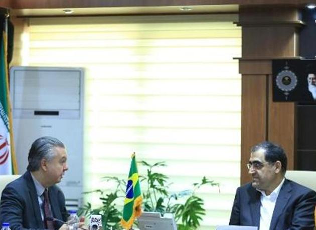 دیدار  و رایزنی وزیر بهداشت با سفیر برزیل در ایران