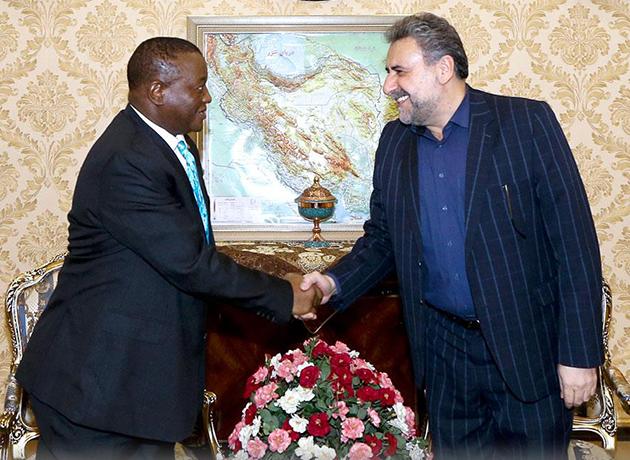 سفیر آفریقای جنوبی: از حفظ و تداوم اجرای برجام حمایت میکنیم