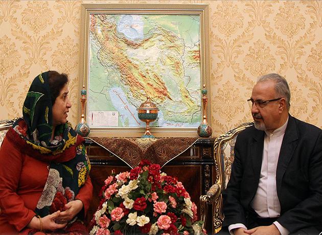 دیدار و رایزنی سفیر پاکستان با مرتضی صفاری نطنزی