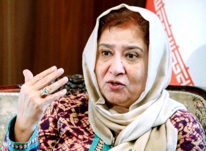 سفیر پاکستان: توسعه گردشگری سبب نزدیک تر شدن روابط با ایران می شود