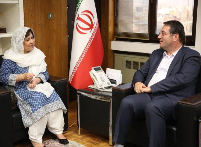 دیدار و تبادل نظر سفیر پاکستان با وزیر صنعت، معدن و تجارت