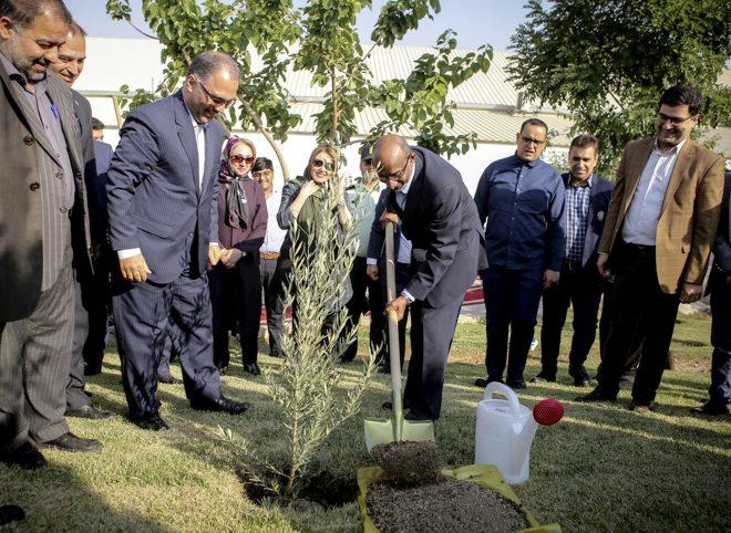 کاشت درختان صلح همزمان با سالگرد ۱۵۰ سالگی گاندی در برج میلاد