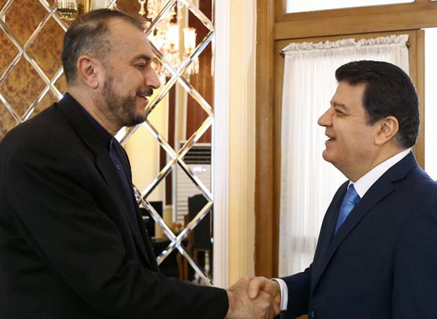 دیدار دستیار ویژه رئیس مجلس در امور بین الملل با سفیر سوریه