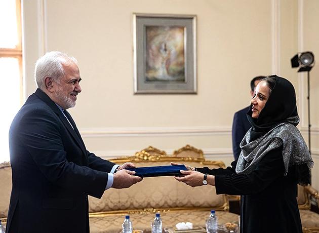 نماینده جدید یونیسف در ایران اعتبارنامه خود را به دکتر ظریف تقدیم کرد