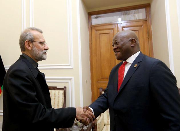 لاریجانی: روند سرمایهگذاری برای آفریقای جنوبی در ایران تسهیل شده است